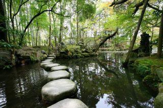 Stone on pond
